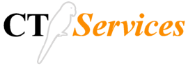 logo CT services
